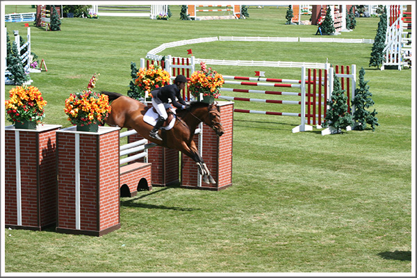 World Class equestrian facility Spruce Meadows